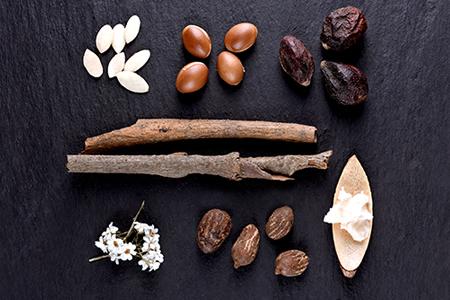 TOP Inhaltsstoffe für die Nährstoff- und Feuchtigkeitsversorgung der Haut